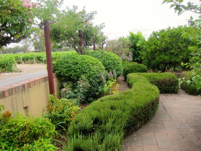 Garden from third